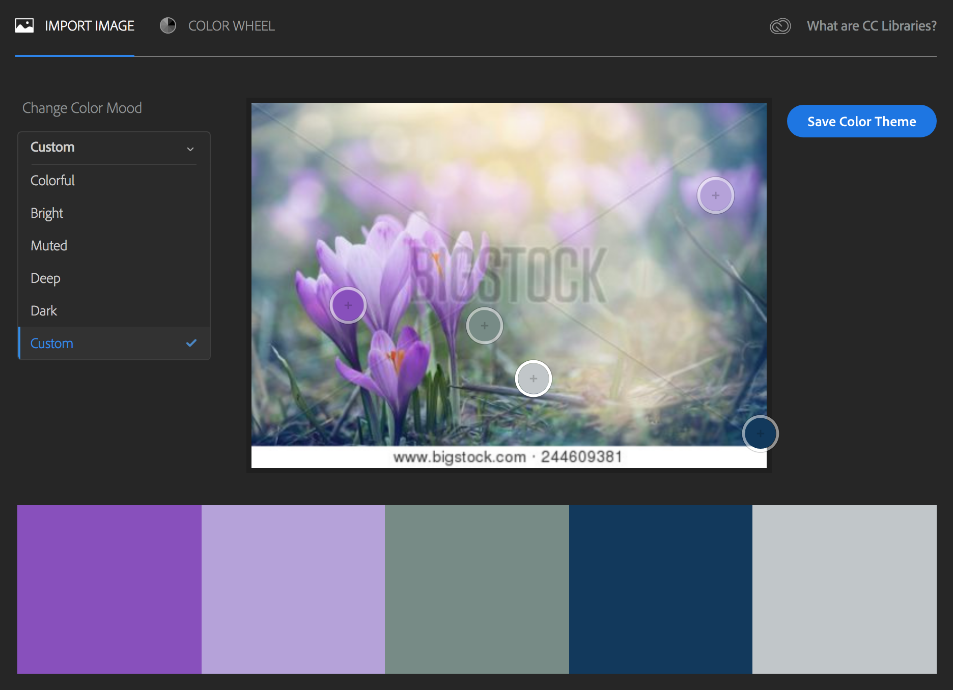 Adobe Color Selector color palette based on stock image